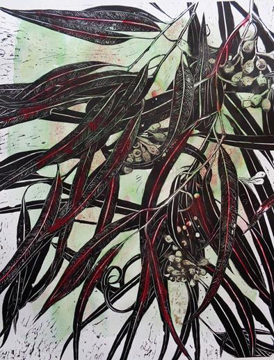 Marion Manifold_Botanica_Extincti_Linocuts_angophora, print 76x56cm